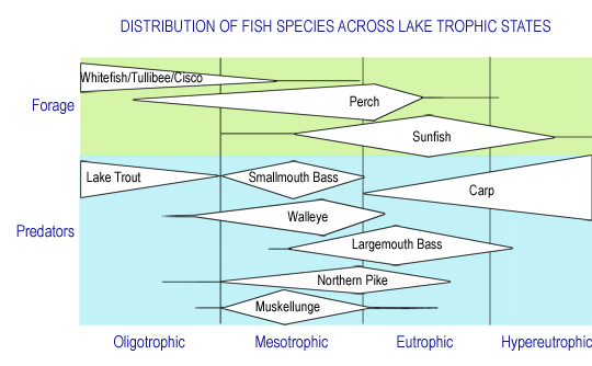 Fish_trophicstates