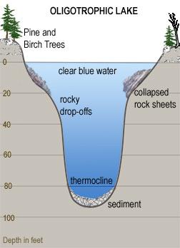 Lake Trophic States Rmbel